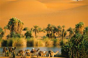 Sa mạc Sahara và những điều lạ kì từng xảy ra