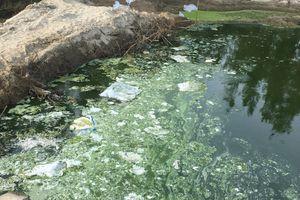 Hà Tĩnh: Hồ nuôi tôm xả hơn 1.000m3 chất bẩn ra môi trường là vi phạm nghiêm trọng