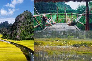 Thảnh thơi du ngoạn Ninh Bình trong tháng 6 tận hưởng một kỳ nghỉ mát lành và an nhiên
