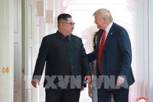 Chuyên gia Mỹ đánh giá Hội nghị thượng đỉnh Mỹ-Triều là thành tựu lịch sử