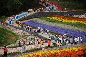 Độc đáo những lễ hội xứ sở Kim chi