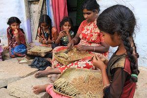 108 hay 541 triệu trẻ em buộc phải làm nông?
