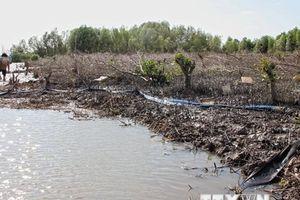 Cà Mau: Kỷ luật chủ tịch xã để xảy ra nhiều sai phạm về đất đai