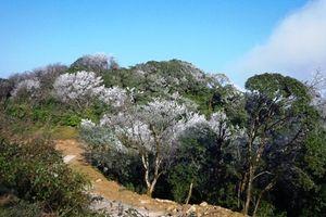 Vào Vườn quốc gia Phia Oắc-Phia Đén