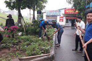 Hà Nội: Cần nhân rộng mô hình xã hội hóa trồng cây xanh tại các phường