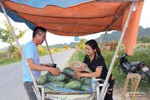 Nông dân Anh Sơn được mùa, được giá dưa hấu đầu vụ