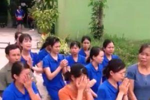 Bộ GD&ĐT lên tiếng về vụ nhiều cô giáo mầm non quỳ, chắp tay ở Nghệ An