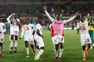 Senegal trở lại World Cup sau 16 năm: Sư tử đã sẵn sàng hóa ngựa ô