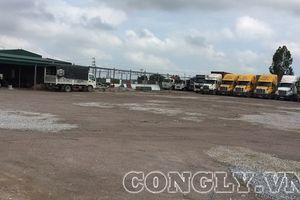 Huyện Tiên Lãng - Hải Phòng: Hàng ngàn diện tích đất nông nghiệp bị sử dụng sai mục đích