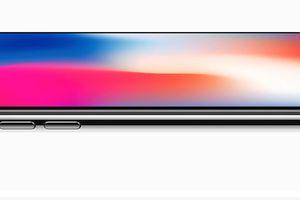 Apple lùi kế hoạch iPhone màn hình lớn vào năm sau?