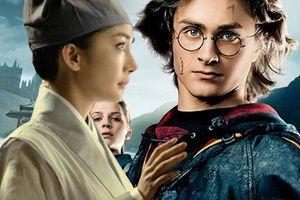 'Phù Dao' phỏng tay vì dính nghi án đạo nhái 'Chiếc cốc lửa' của Harry Potter