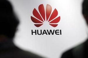 Các nghị sỹ Mỹ muốn Google xem xét mối quan hệ với Huawei
