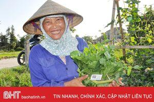 Chuyện con tem trên bó rau ở Hà Tĩnh
