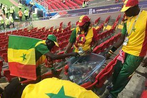 Cổ động viên Nhật Bản, Senegal ở lại dọn rác sau trận đấu