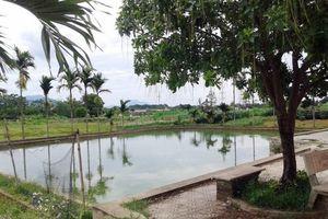 Mẹ ngất lịm khi 2 con tử vong thương tâm ở bể bơi giếng làng