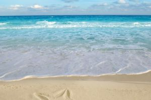 5 tác nhân gây bệnh trong cát biển không thể bỏ qua