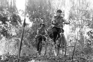 Những người canh giữ để rừng mãi thêm xanh