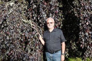 Ông lão 75 tuổi có vườn cây quý hiếm, giá tiền tỷ mỗi cây