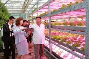'Nghĩa địa doanh nghiệp' ở Triều Tiên