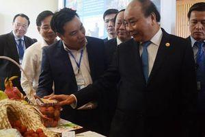 Việt Nam sẵn sàng vì một hành tinh bền vững