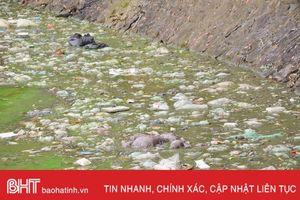 Mỗi ngày, gần 50 tấn rác nilon thải ra môi trường