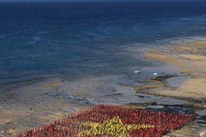 3.000 người tham gia xếp hình cờ Tổ quốc trên biển