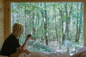 Xây dựng trại cai nghiện thiết bị kỹ thuật số trong rừng hẻo lánh