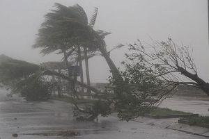 Tháng 7 sẽ có 1 đến 2 cơn bão có thể đổ vào đất liền nước ta