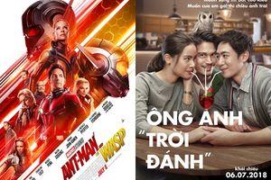 Háo hức chào tháng 7 bằng những bộ phim hay ngoài rạp, mong chờ nhất là phim siêu anh hùng 'Người Kiến và Chiến Binh Ong'