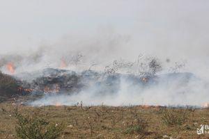 TP Vinh: Cháy bãi rác Hưng Đông ước diện rộng cả nghìn m2