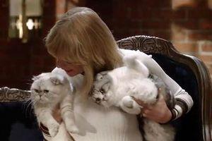 2 'boss' của Taylor Swift chú ý: Đã có kẻ thứ ba ủ mưu chiếm đoạt 'sen' rồi này!