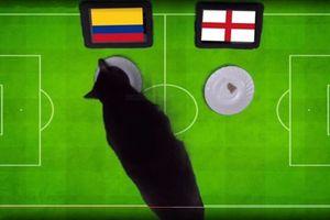 Dự đoán World Cup: 'Tiên tri' đưa kết quả bất ngờ trận Anh gặp Colombia