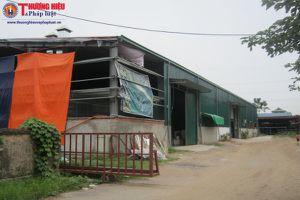 Đồng Mai, Hà Đông: Nhà xưởng xây dựng không phép vi phạm đê sông Đáy, chính quyền bó tay