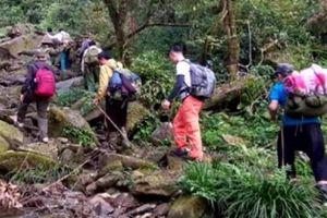 Hành trình triệt phá cây thuốc phiện nơi vùng cao Tây Bắc