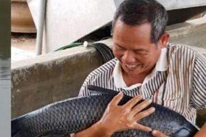 Làm giàu ở nông thôn: Tuấn cầu Nề và trang trại nuôi toàn cá 'khủng'