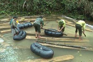 Kỷ luật hàng loạt cán bộ liên quan đến vụ phá rừng nghiêm trọng ở Quảng Bình