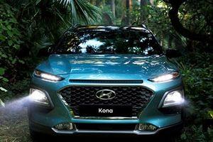 Hyundai Kona được lắp ráp trong nước, chuẩn bị ra mắt Việt Nam