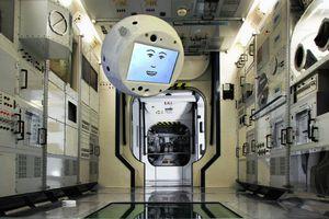Sứ mệnh vũ trụ của robot CIMON