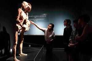 Xung quanh triển lãm 'Sự bí ẩn đặc biệt của cơ thể người': Gây tranh cãi vì chưa có tiền lệ