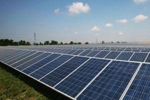 Nếu ảnh hưởng sinh kế của người dân, Bình Định không thực hiện dự án điện mặt trời