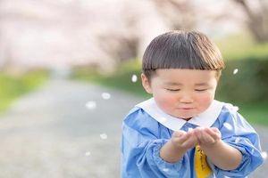 Cậu nhóc Nhật Bản đầu nấm 'gây mê' cộng đồng mạng