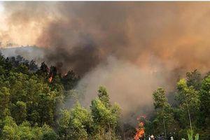 Hàng chục ha rừng thông cháy dữ dội trong nắng nóng 40 độ C ở Thanh Hóa