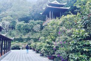 Đến Huế là về với đất Phật