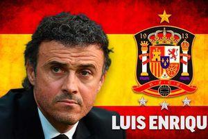 HLV Luis Enrique ngồi 'ghế nóng' đội tuyển Tây Ban Nha