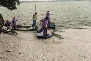 Phun thuốc khử độc ở Hồ Tây sau hàng chục tấn cá chết