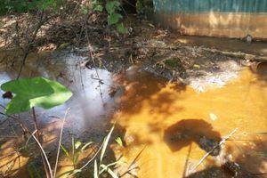 Bắc Ninh: Công ty Dương Phú gây ô nhiễm môi trường, địa phương chưa mạnh tay xử lý?
