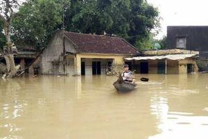 Cảnh báo lũ và sạt lở đất ở các tỉnh từ Quảng Trị đến Phú Yên