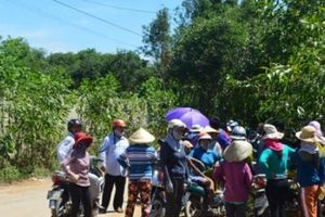 Quảng Ngãi: Chỉ đạo khẩn vụ rác thải ngập thành phố