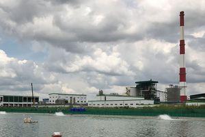 Xem xét tác động môi trường của dự án giấy ở Hải Phòng