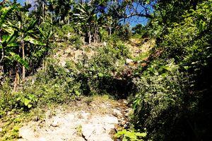 Vụ nứt núi Bình Định: Lập đoàn kiểm tra, 'soi' nguyên nhân